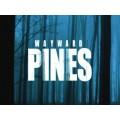 Wayward Pines Saison 1 Episode 1