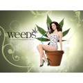 Weeds Saison 3 Episode 1